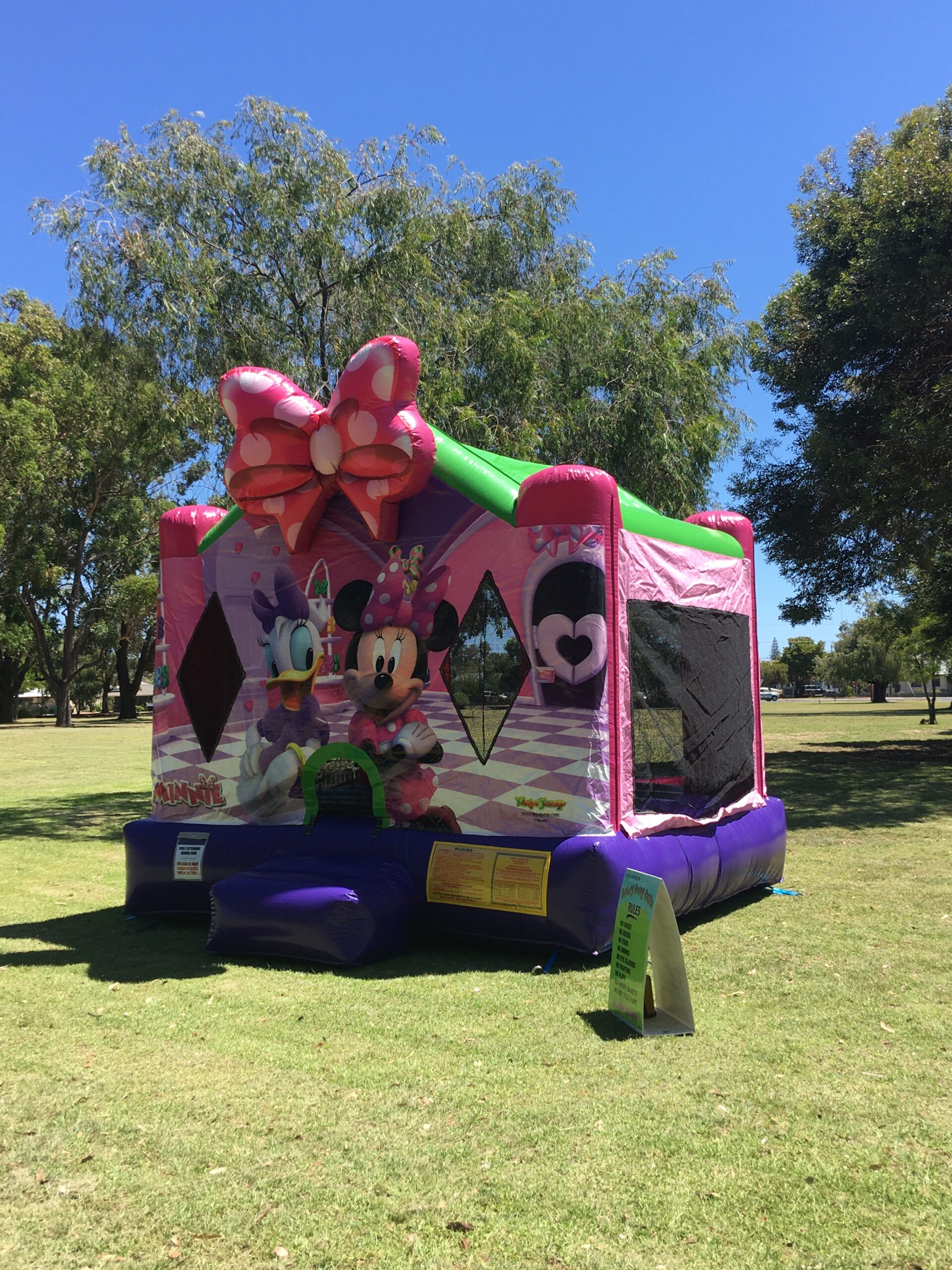 Factors to Consider When Hiring a Bouncing Castle